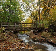 Glen Leigh Bridge by Tim Devine