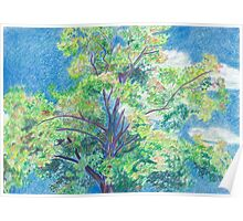 Colorful Tree and Sky Poster
