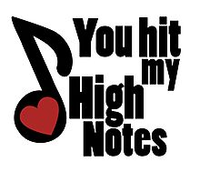 You hit my high notes musical love Photographic Print