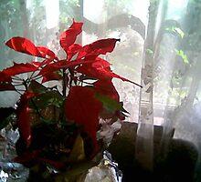 Christmastime by dan91935