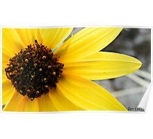 Yellow, Like The Sun Poster