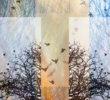Abstracted Composition With Branches and Birds – October 1, 2010 by Ivana Redwine