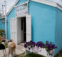 Miss Emily's  Blue Bee Bar, Green Turtle Cay, Abaco by DreamPhotograph