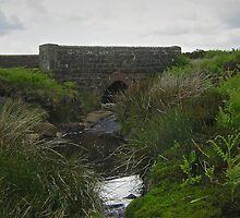 Stope Bridge by Janet Watson