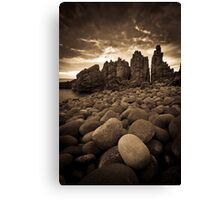 ... in a gazillion years time Canvas Print