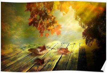 Autumn leaves by Veikko  Suikkanen