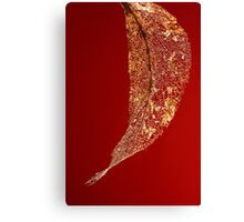 Framework in Red Canvas Print