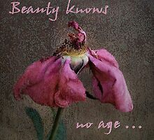 Beauty knows no age by Rosalie Dale