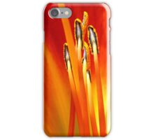 Passion  - JUSTART ©  iPhone Case/Skin