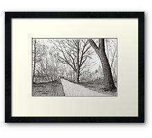 GOLDEN FROSTY TREES Framed Print