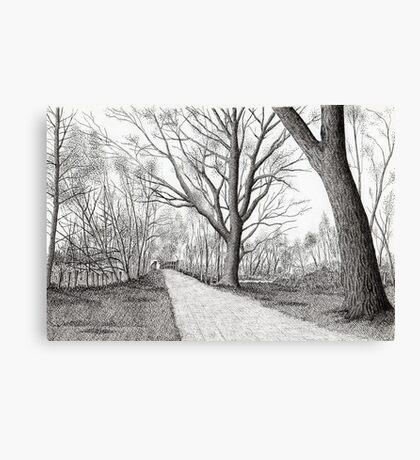 GOLDEN FROSTY TREES Canvas Print