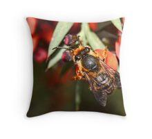 Native Bee Throw Pillow