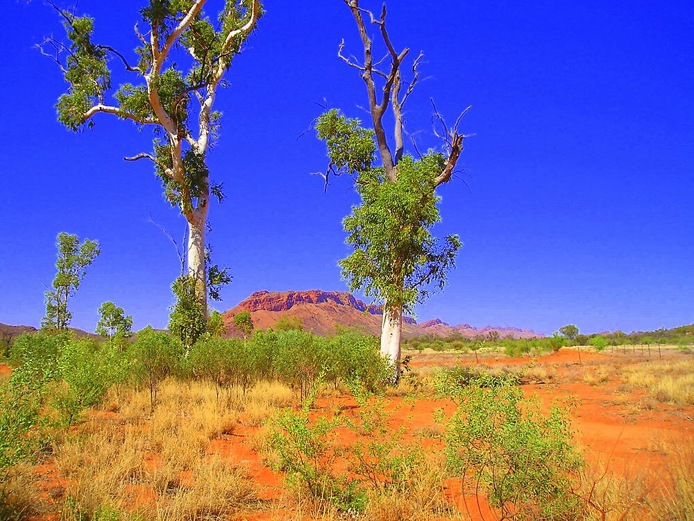 Red Centre Gums by lateralconcepts