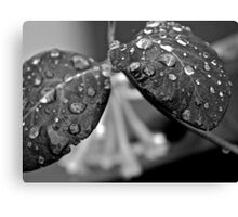 Brilliants water drops - Bad Girls Dreams  and  Desire. Brown Sugar Vintage Art  STORYBOOK.  Views (411) favorited by (1) thank you ! Canvas Print