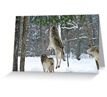 When Wolves Fly Greeting Card