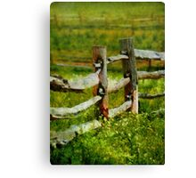 Country - The old fence post  Canvas Print