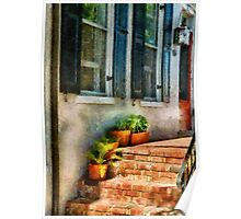 Flowers - Plants - The Stoop  Poster