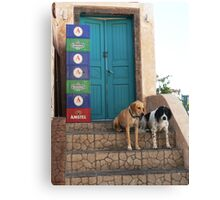 Hair Of The Dogs Canvas Print