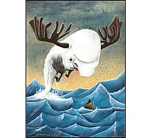 The search for the Moose Whale Photographic Print