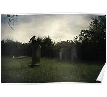 Daytime at the graveyard Poster