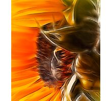 Solar Flower Photographic Print