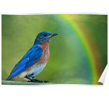 Somewhere over the rainbow, bluebirds fly . . . Poster