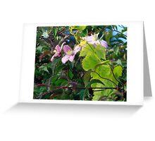 Flower dew Greeting Card