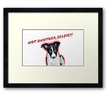 Not Another Selfie - Dog! Framed Print