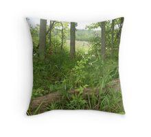 Indiana Farm Woods Throw Pillow