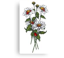 Daisies and Ladybugs, Floral, Wildlife, Illustration Canvas Print
