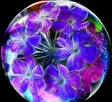 Verbena in a Bubble by Brenda Boisvert