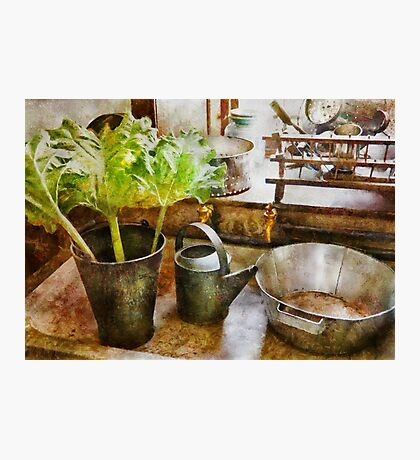 Kitchen - Eat your greens Photographic Print