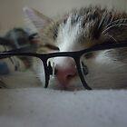 Dexxie Specs by Matt Roberts