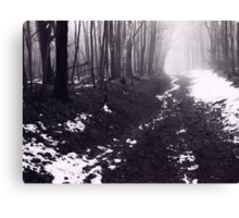 Thaw at Mono Cliff's...Bruce Trail Canvas Print