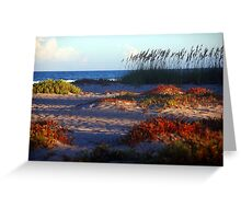 Sand Dunes at Cocoa Beach, FL  Greeting Card