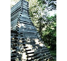 Laumeier Sculpture Park, St. Louis, Missouri Photographic Print
