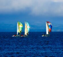 Sailing by Robin  Koster