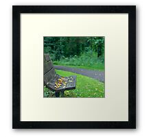 Empty Seat At Dusk Framed Print