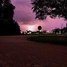 Purple Haze by HeavenlyCanvas