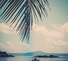 Tropical beach by dvoevnore