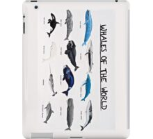 Whales Of The World Chart iPad Case/Skin