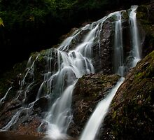 Cascading Falls by Charles Plant