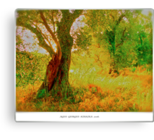 Agios Giorgios . Kerkira . Greece . 2006. by Brown Sugar . Favorites: 5 Views: 532 . THANKS WITH WAAAAWS !!!!! Canvas Print