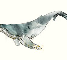 Humpback Whale by Amy Hamilton