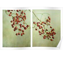 Frutti d'autunno Poster