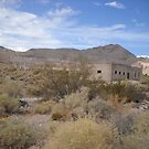 Ghost Town Rhyolite Nevada by marilyn diaz