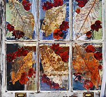 Autumn Window by Roger Jewell