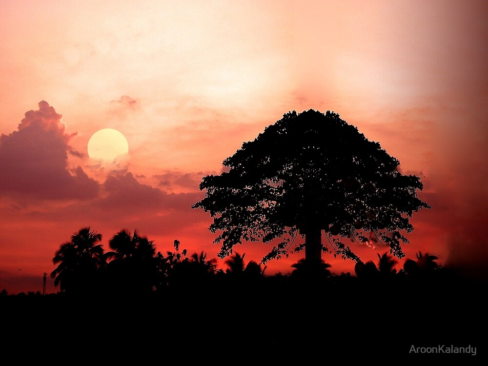 Exotic Sunset by AroonKalandy