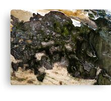 Abstract Minerals Canvas Print
