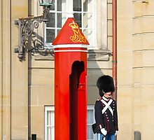 Royal guard at Amalienborg Royal Palace in Copenhagen, Denmark. by Atanas Bozhikov Nasko